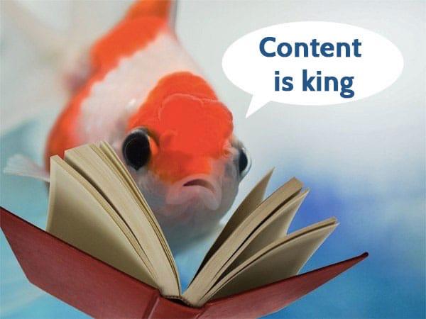 Optimize360 - Livre Blanc 5 points essentiels pour un site bien référencé - Le contenu